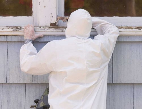 Do Homes Still Have Lead Paint?