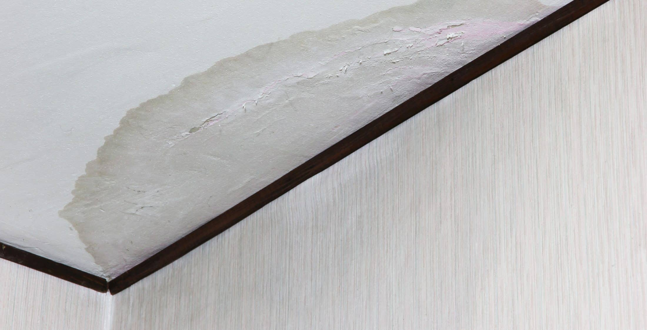 Water stain on a ceiling