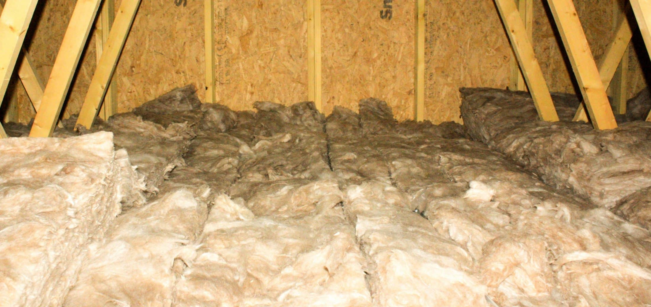 View of attic and asbestos insulation